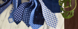 ardentes-clipei-cravates-bleues